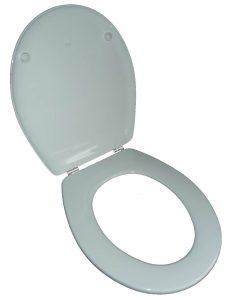 WC-Sitz-Roca ägäis-geöffnet
